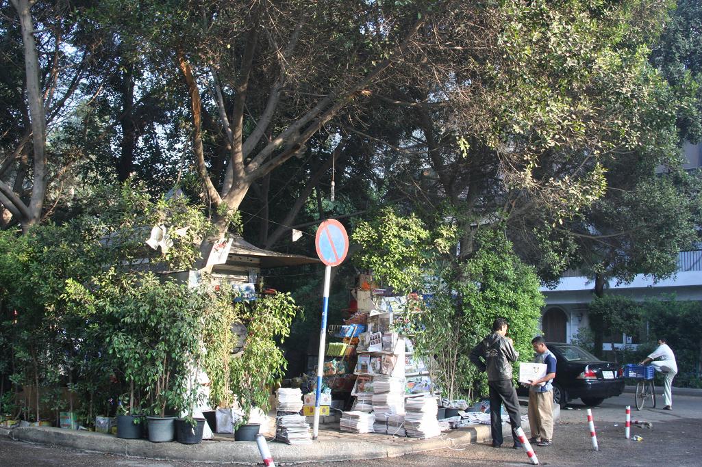 maadi market