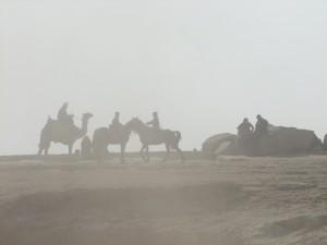 Giza_hazy horses