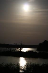 camping_4.12_moonlight