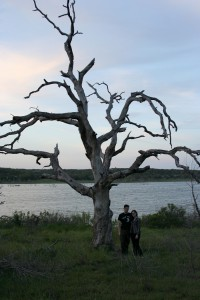 camping_4.12_tree eandb